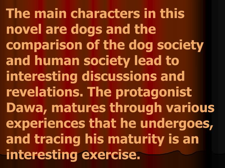 The main characters in this novel are dogs and the comparison of the dog society and human society lead to interesting discussions and revelations. The protagonist Dawa, matures through various experiences that he undergoes, and tracing his maturity is an interesting exercise.