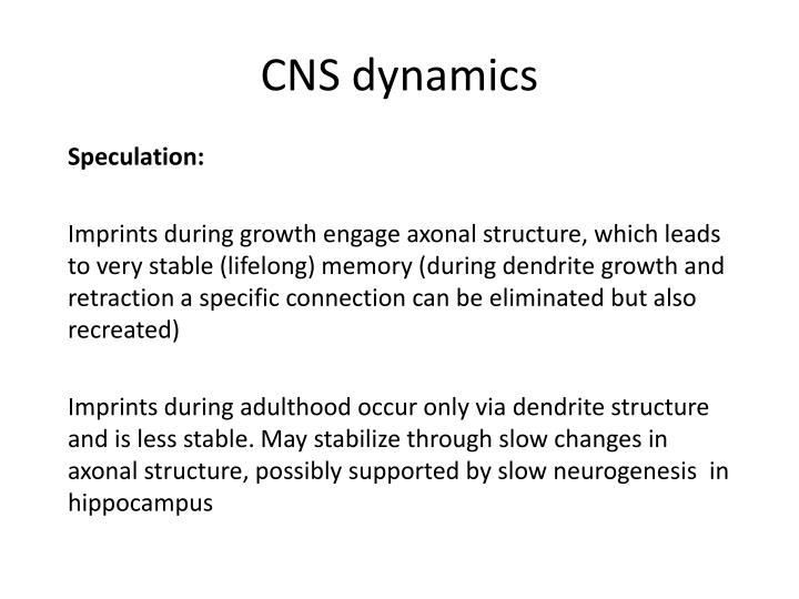 CNS dynamics