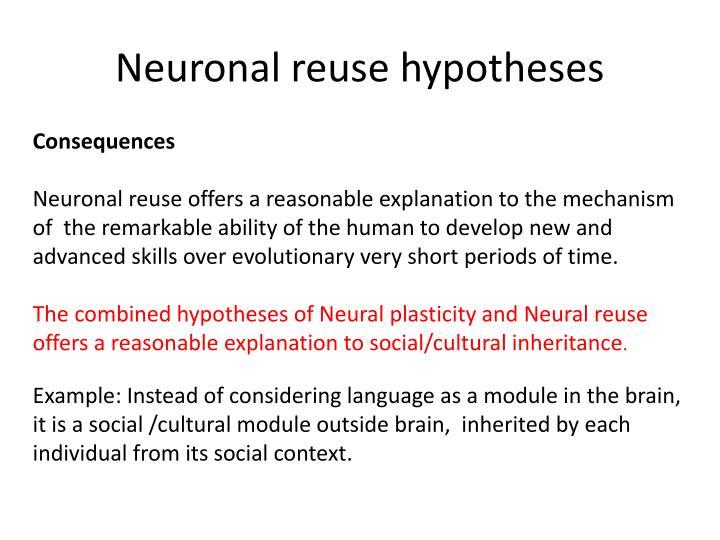 Neuronal reuse hypotheses