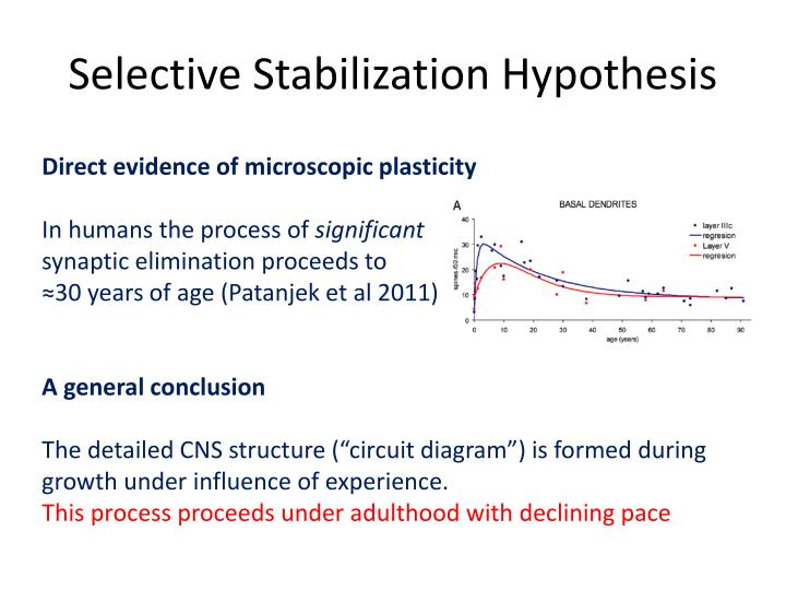 Selective Stabilization Hypothesis