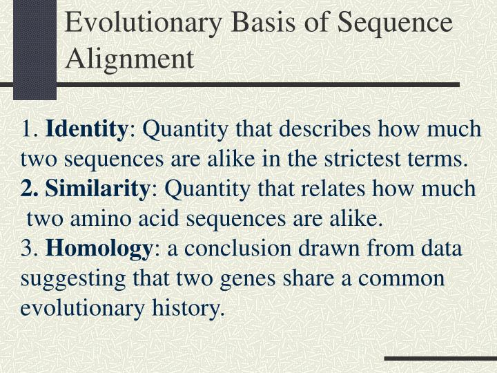 Evolutionary Basis of Sequence Alignment