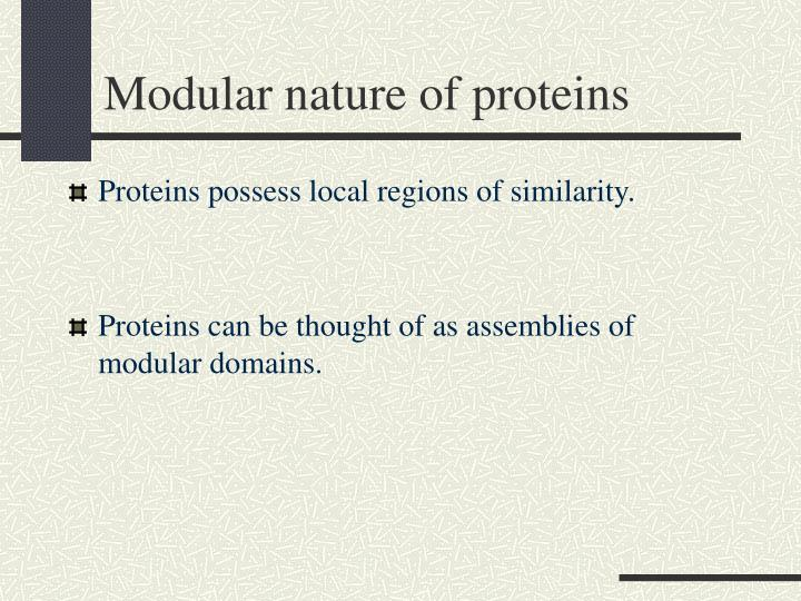 Modular nature of proteins