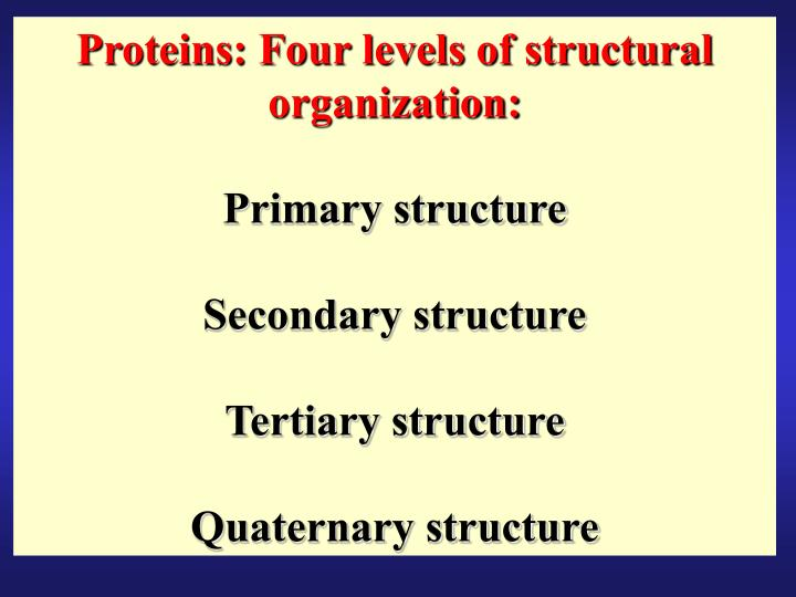 Proteins: Four levels of structural organization: