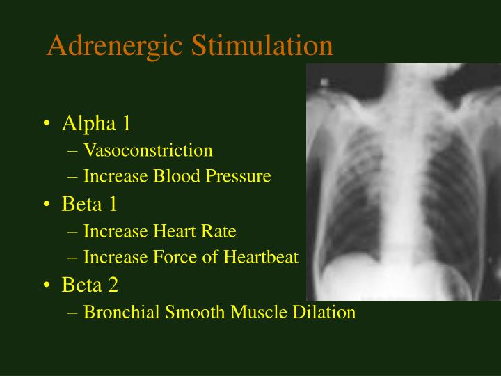 Adrenergic Stimulation