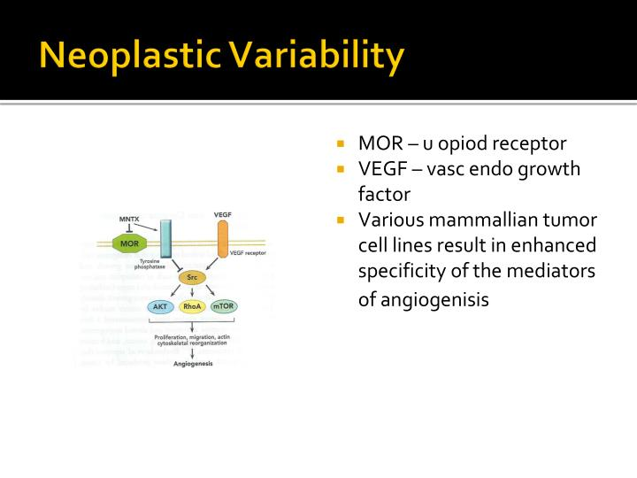 Neoplastic Variability