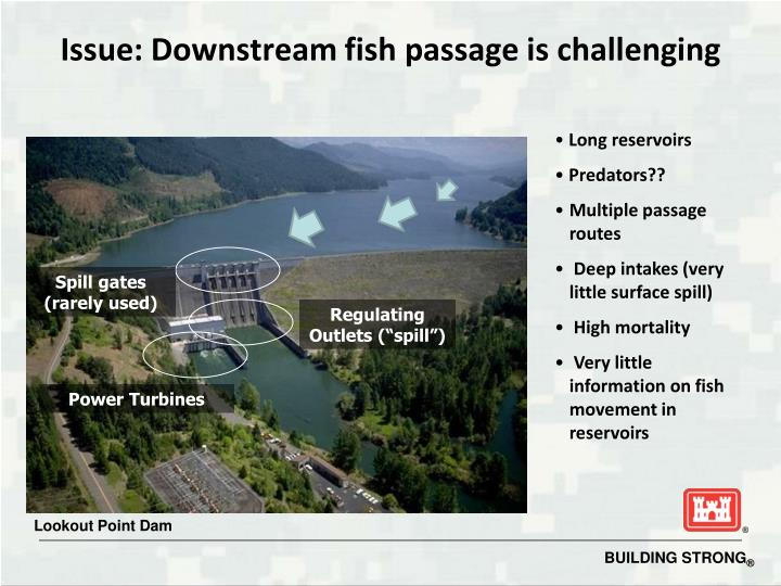 Issue: Downstream