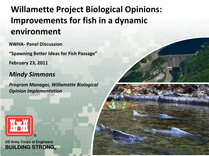 Willamette project biological opinions improvements for fish in a dynamic environment