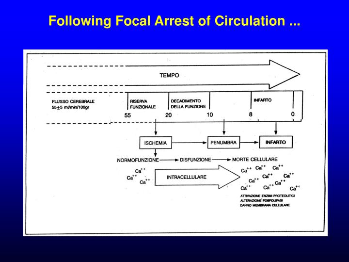 Following Focal Arrest of Circulation ...