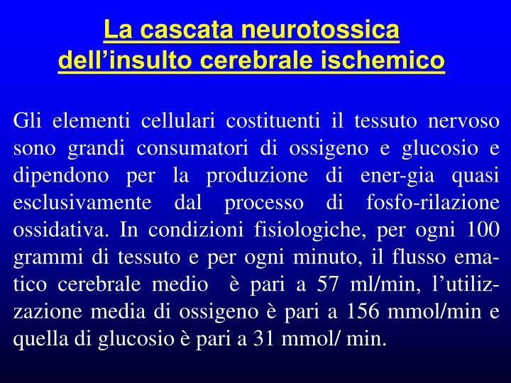La cascata neurotossica dell'insulto cerebrale ischemico
