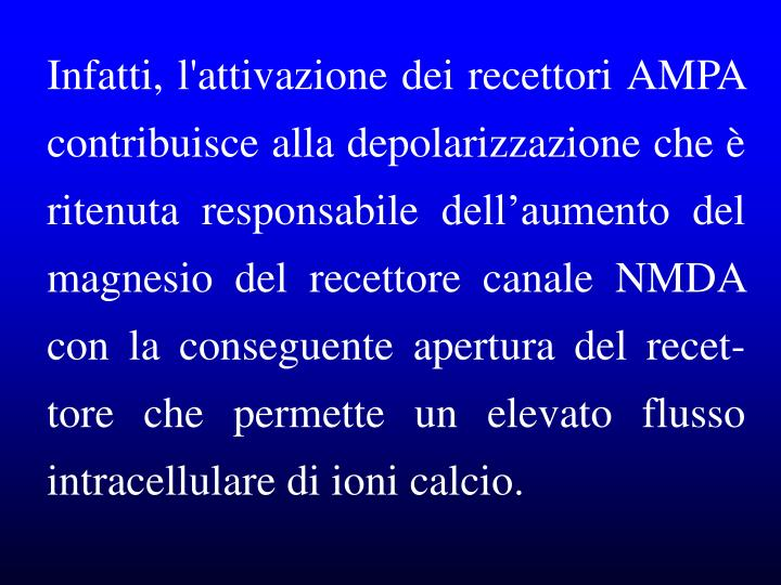 Infatti, l'attivazione dei recettori AMPA contribuisce alla depolarizzazione che è ritenuta responsabile dell'aumento del magnesio del recettore canale NMDA con la conseguente apertura del recet-tore che permette un elevato flusso intracellulare di ioni calcio.