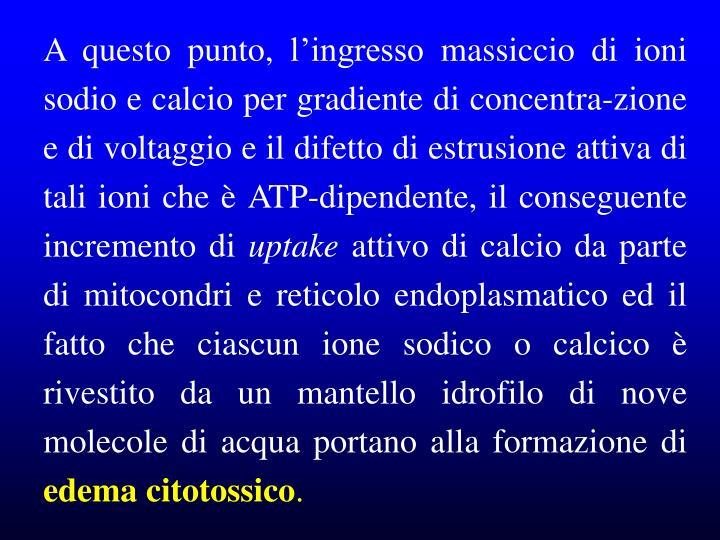 A questo punto, l'ingresso massiccio di ioni sodio e calcio per gradiente di concentra-zione e di voltaggio e il difetto di estrusione attiva di tali ioni che è ATP-dipendente, il conseguente incremento di