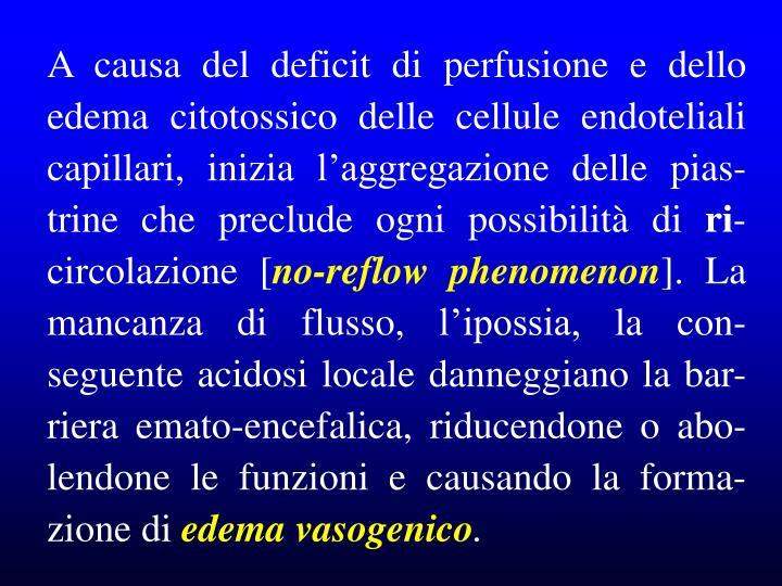 A causa del deficit di perfusione e dello edema citotossico delle cellule endoteliali capillari, inizia l'aggregazione delle pias-trine che preclude ogni possibilità di