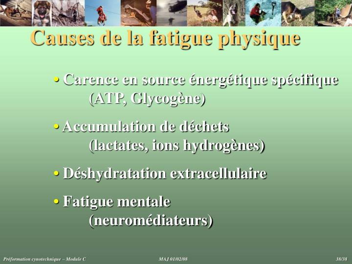 Causes de la fatigue physique