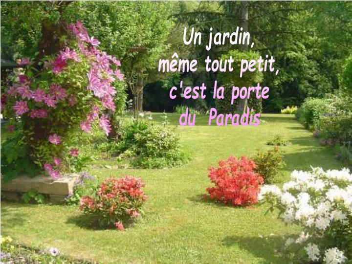 Un jardin,