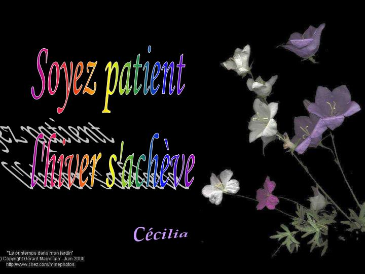 Soyez patient