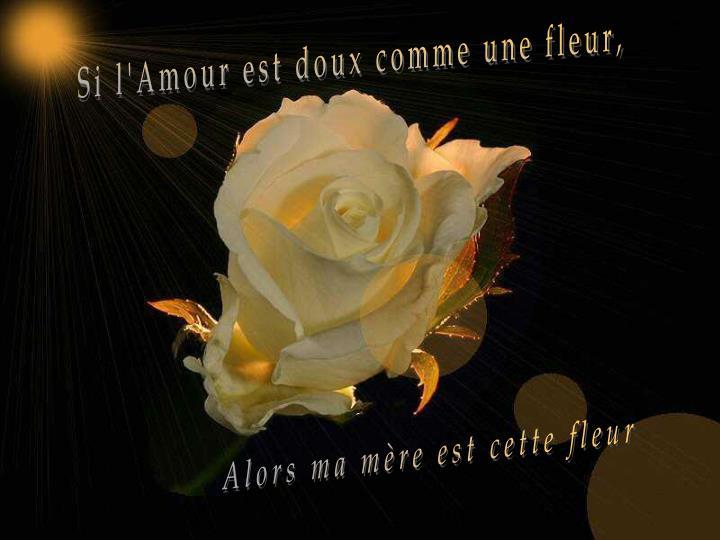 Si l'Amour est doux comme une fleur,
