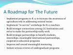 a roadmap for the future
