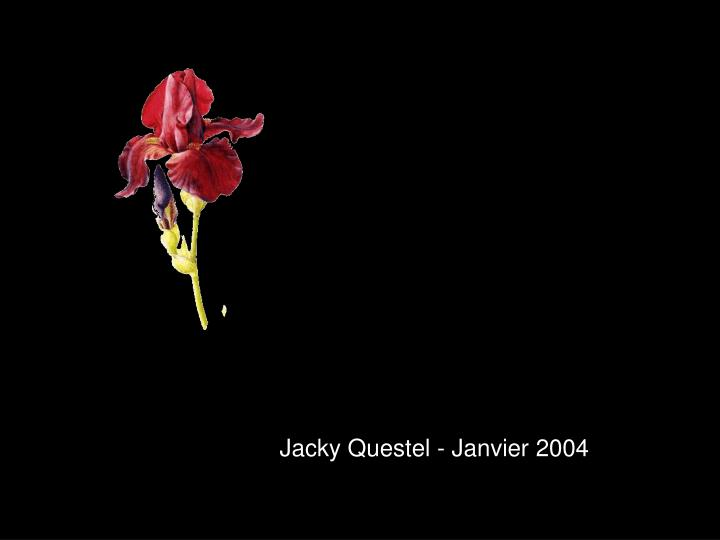 Jacky Questel - Janvier 2004
