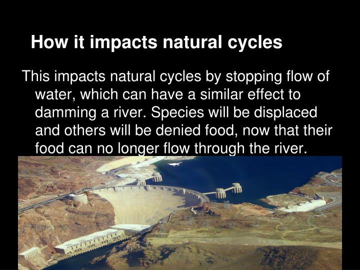 How it impacts natural cycles