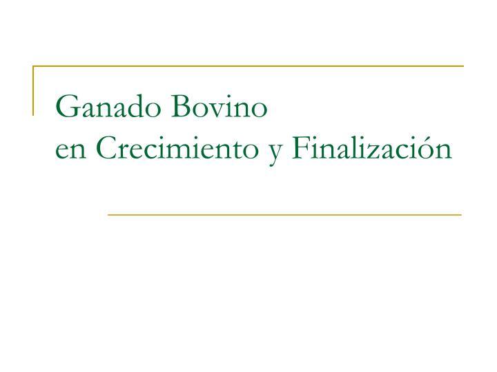 Ganado Bovino                       en Crecimiento y Finalizaci