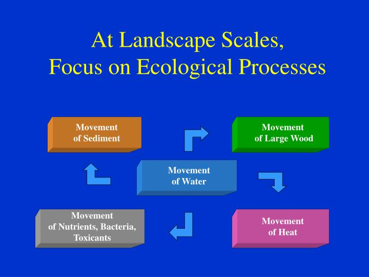 At Landscape Scales,