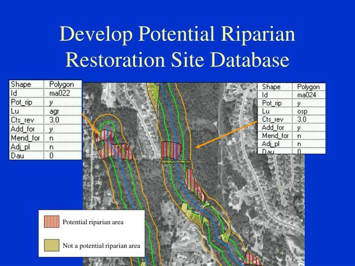Potential riparian area