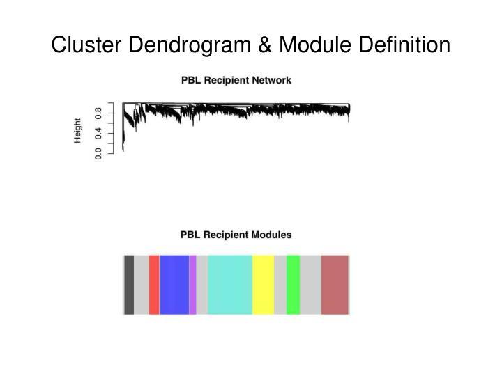 Cluster Dendrogram & Module Definition