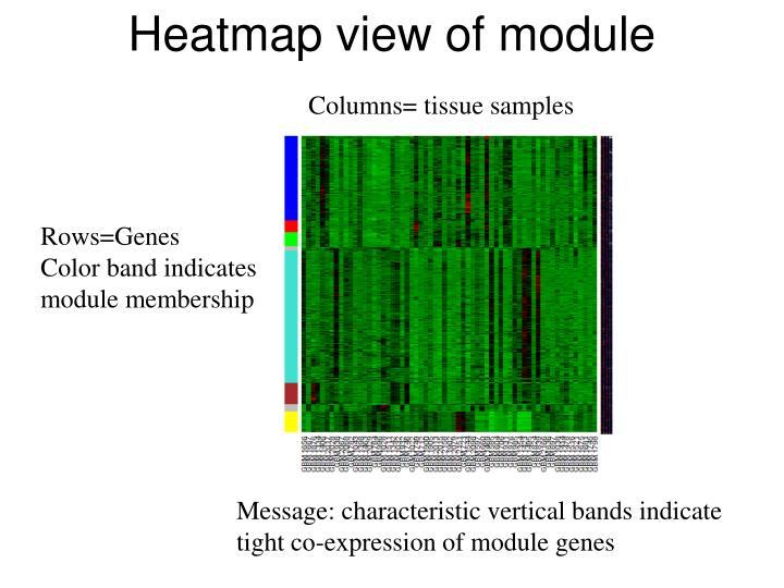 Heatmap view of module