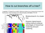 how to cut branches off a tree