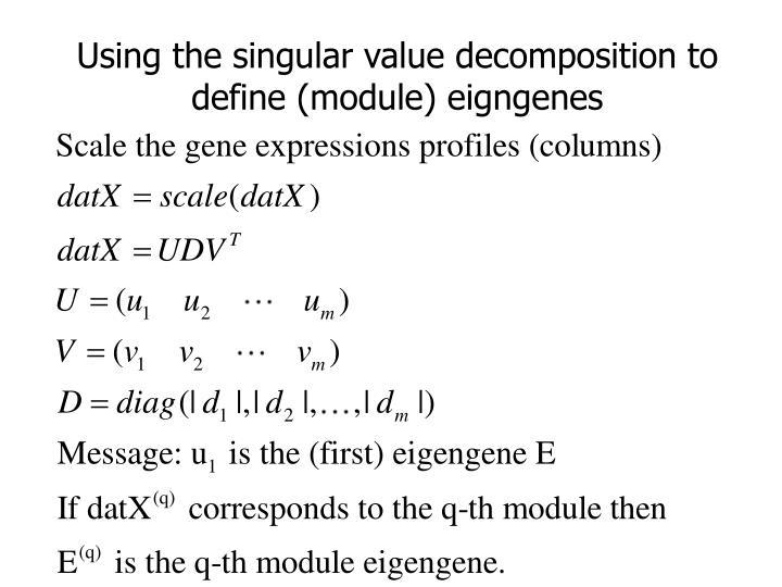 Using the singular value decomposition to define (module) eigngenes