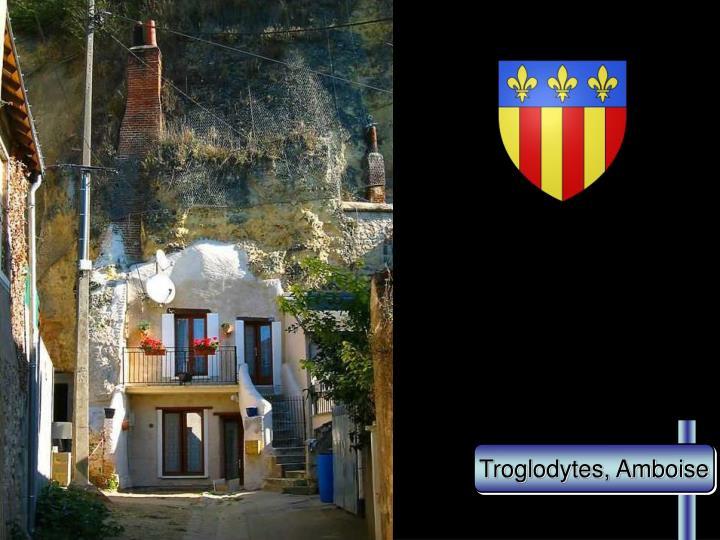 Troglodytes, Amboise