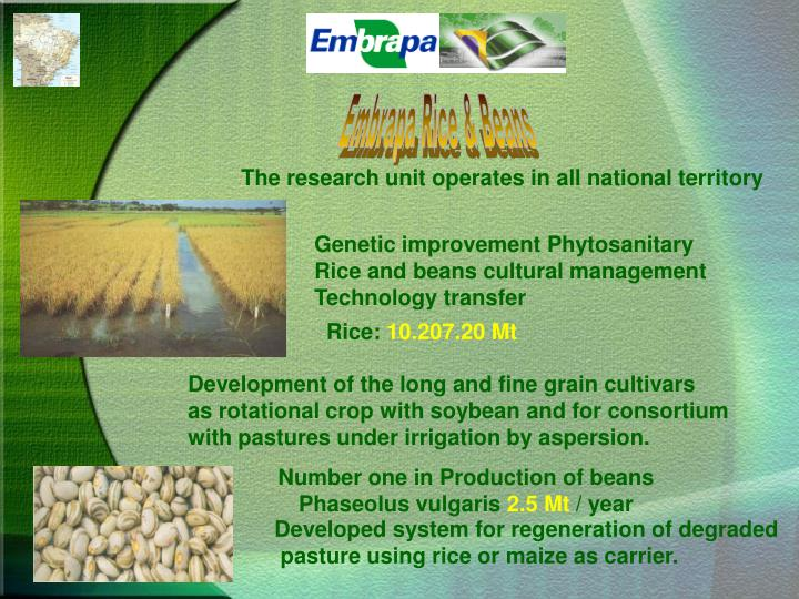 Embrapa Rice & Beans