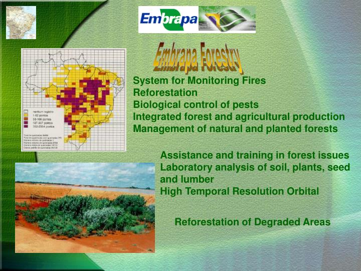 Embrapa Forestry