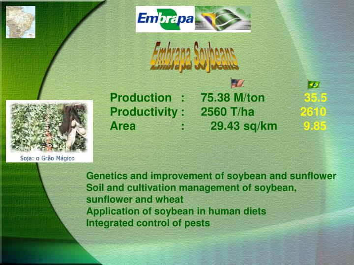 Embrapa Soybeans