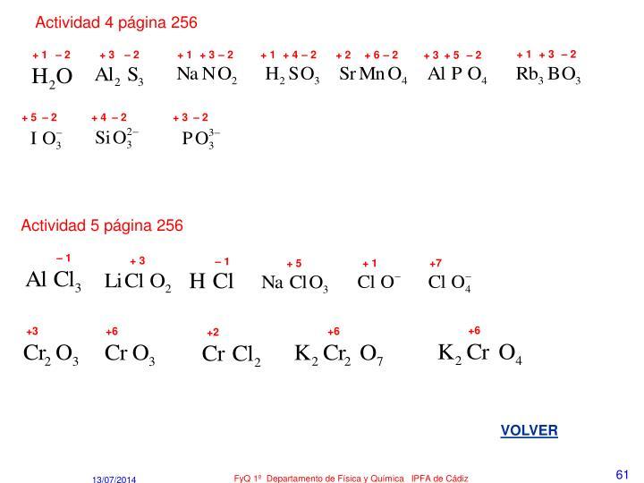 Actividad 4 página 256