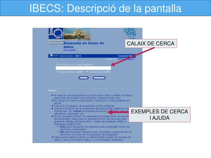 IBECS: Descripció de la pantalla