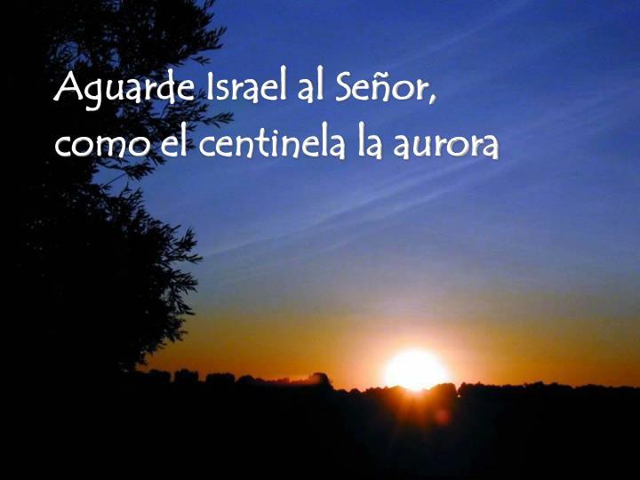 Aguarde Israel al Señor,