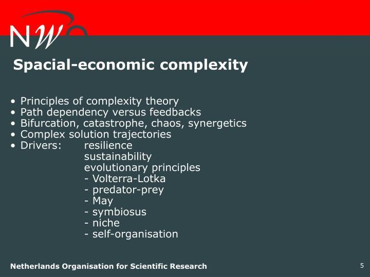Spacial-economic complexity