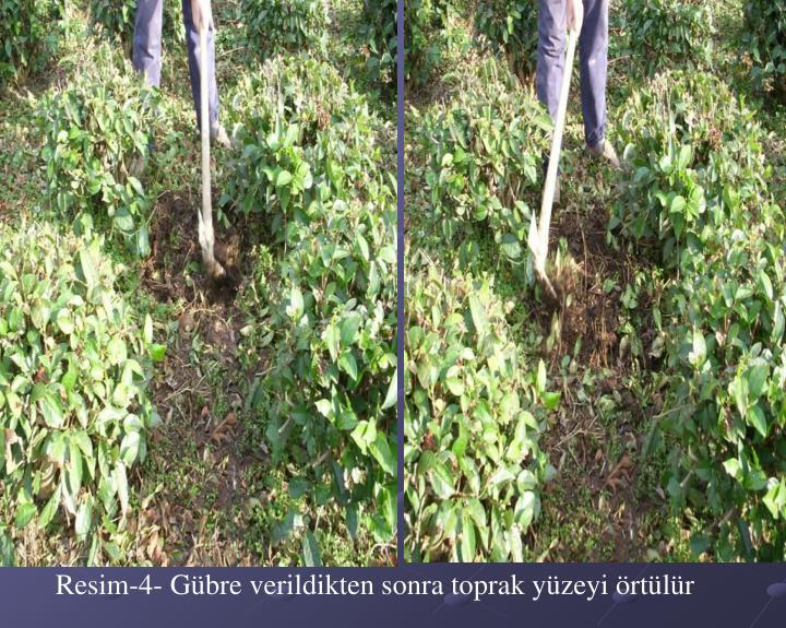 Resim-4- Gübre verildikten sonra toprak yüzeyi örtülür