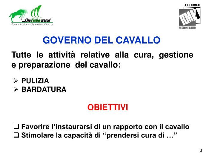 GOVERNO DEL CAVALLO