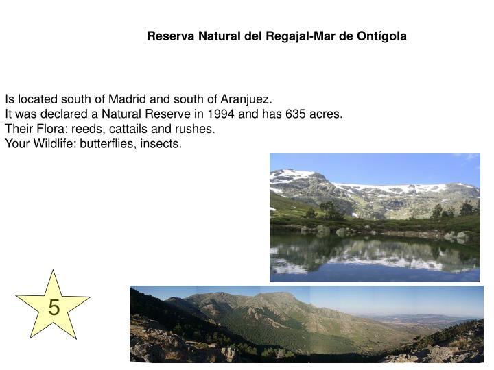 Reserva Natural del Regajal-Mar de Ontígola