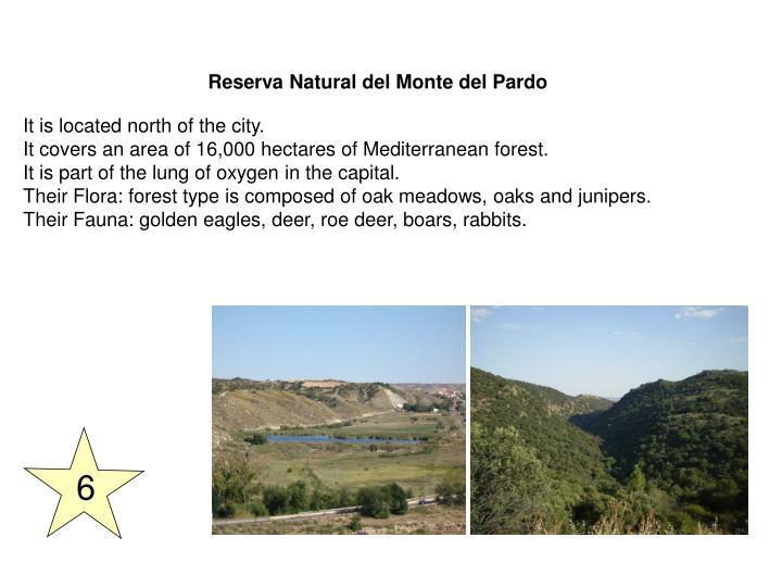 Reserva Natural del Monte del Pardo
