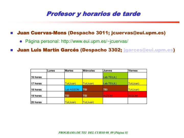 Profesor y horarios de tarde