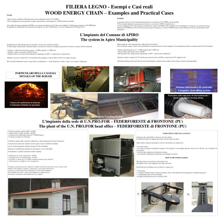 Filiera legno esempi e casi reali wood energy chain examples and practical cases