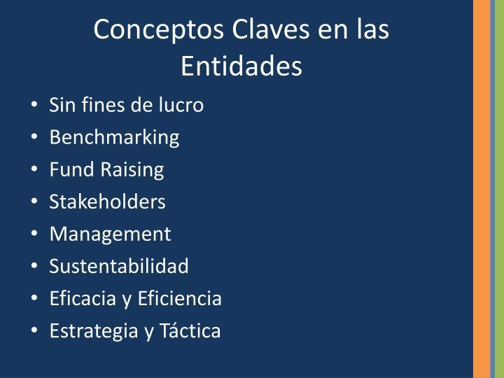 Conceptos Claves en las Entidades