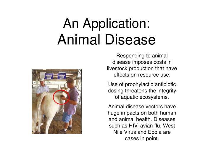 An Application: