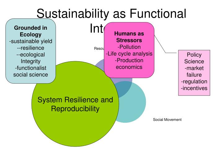 Sustainability as Functional Integrity