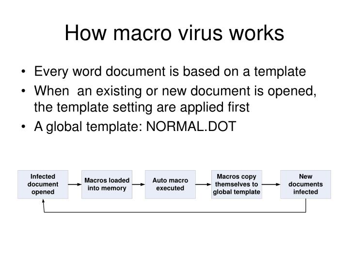 How macro virus works