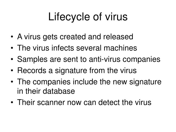 Lifecycle of virus