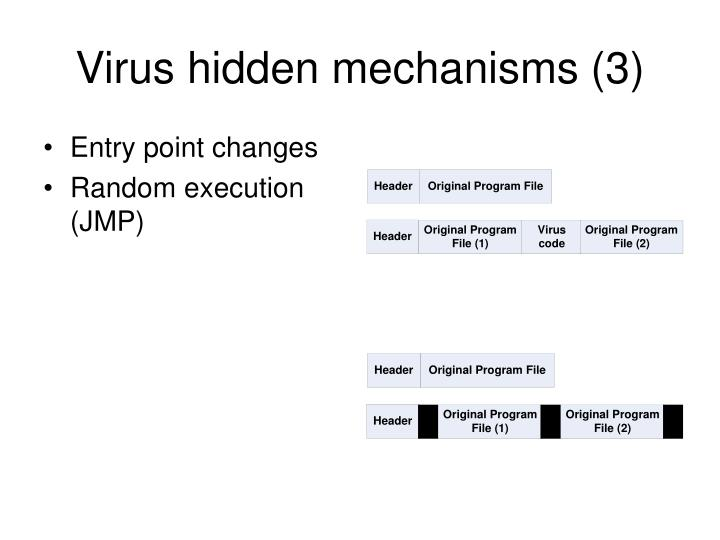 Virus hidden mechanisms (3)